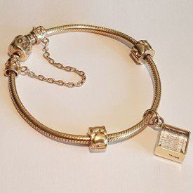Pet Memorial Bracelets And Charms