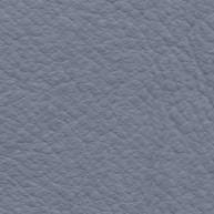 Carribean Blue Leather