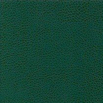 Spruce Green Leather